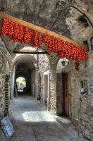 images/gallery/albums/9-Chios/pic10.jpg